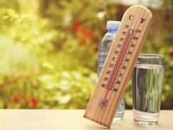 Canicule : les conseils pour supporter la chaleur